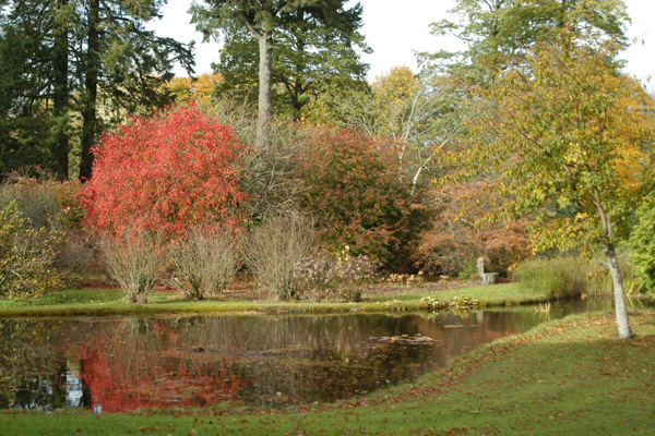 The Gardens in Autumn at Coolcarrigan