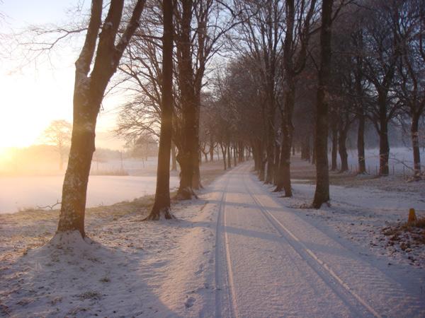 Winter at Coolcarrigan
